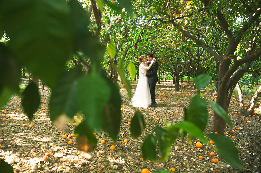 Wedding Photoshooting. orange trees. Bride's and Groom's portrait. Riziko. greek wedding . Chios , Greece. greek island. Couple photoshooting. Love and married. Alepa Katerina . Layer Photography